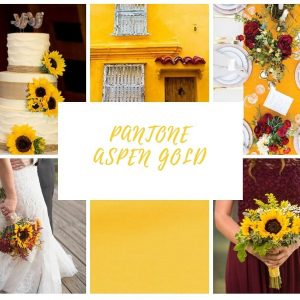 aspen gold poročni trendi enchpro (4)