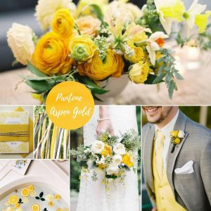 aspen gold poročni trendi enchpro (5)