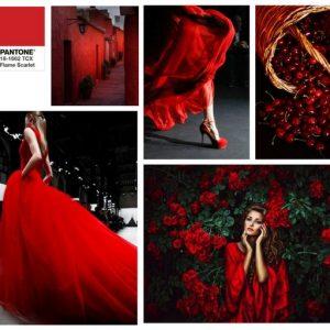 flame scarlet (7)