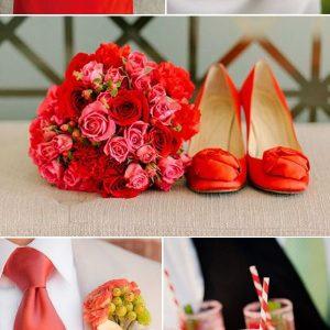 poročni trendi fiesta enchpro (2)
